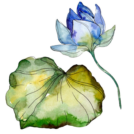 Blue purple floral botanical flower. Wild spring leaf wildflower isolated. Watercolor background illustration set. Watercolour drawing fashion aquarelle isolated. Isolated lotus illustration element. 写真素材