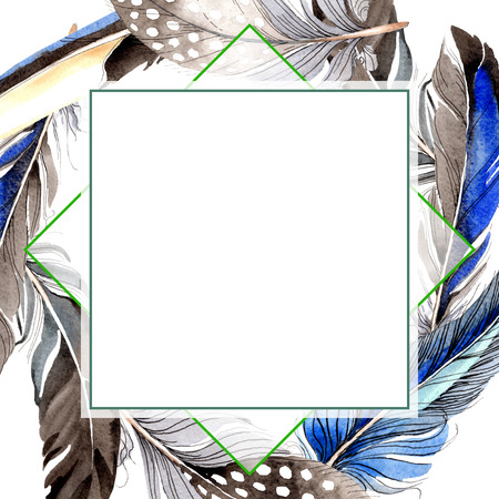 Bird feather from wing isolated. Watercolor background illustration set. Watercolour drawing fashion aquarelle isolated. Frame border ornament square on white background. 写真素材