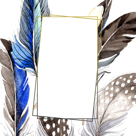 Bird feather from wing isolated. Watercolor background illustration set. Watercolour drawing fashion aquarelle isolated. Frame border ornament square on white background. Foto de archivo - 117488518