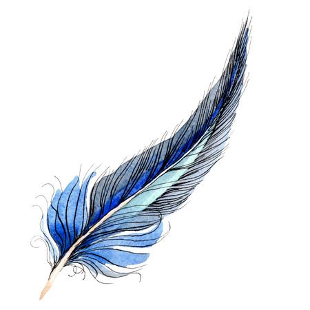 Pluma de pájaro del ala aislada. Conjunto de ilustración de fondo de acuarela. Dibujo de acuarela aquarelle de moda. Elemento de ilustración de plumas aisladas sobre fondo blanco.