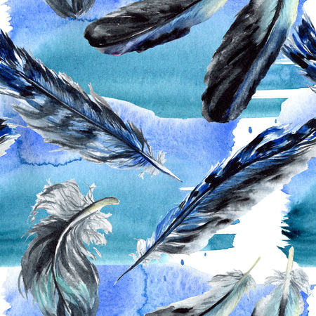Blue black bird feather from wing isolated. Watercolor background illustration set. Watercolour drawing fashion aquarelle. Seamless background pattern. Fabric wallpaper print texture. Stockfoto