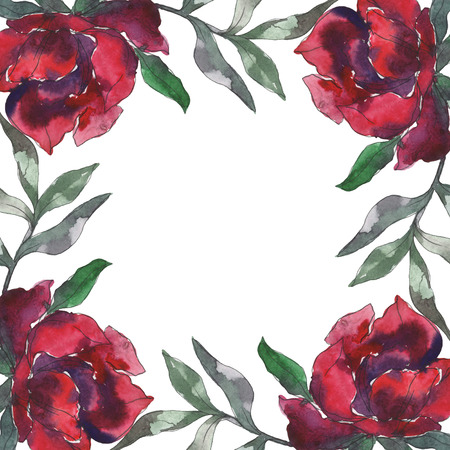 Burgundy peony floral botanical flower. Wild spring leaf wildflower isolated. Watercolor background illustration set. Watercolour drawing fashion aquarelle isolated. Frame border ornament square. Stock Photo