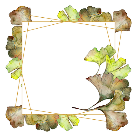 Ginkgo biloba green leaf plant botanical garden floral foliage. Watercolor background illustration set. Watercolour drawing fashion aquarelle isolated. Frame border ornament square. Stockfoto
