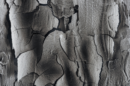 cracked barren land surface, global warming concept 版權商用圖片