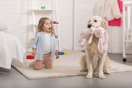 surprised adorable kid looking at golden retriever holding toy in children room