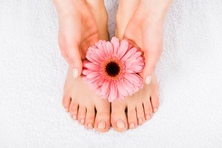 Vista recortada de mujer descalza sosteniendo flor rosa
