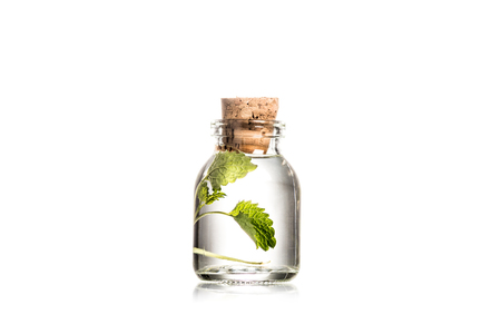 Studio shot of glass bottle with mint leaves isolated on white Stockfoto