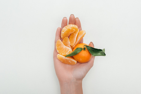 cropped view of woman holding peeled tangerine slices and whole tangerine on white background