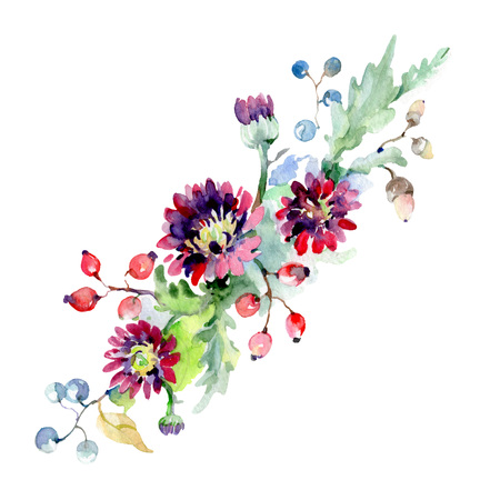 Bouquet with flowers and berries. Floral botanical flower. Wild spring leaf wildflower. Watercolor background set. Watercolour drawing fashion aquarelle. Isolated bouquet illustration element.