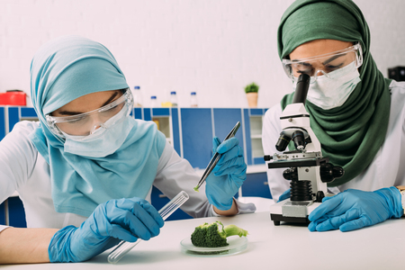 female muslim scientists looking through microscope and taking sample of broccoli during experiment in chemical laboratory