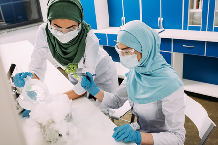 female muslim scientists experimenting with dry ice and broccoli in chemical laboratory