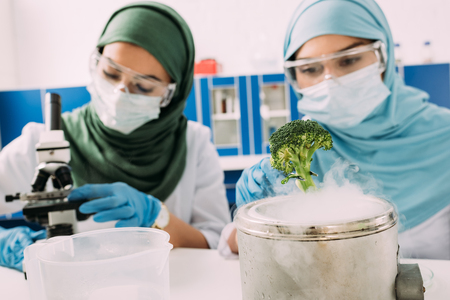 female muslim scientists experimenting with broccoli and dry ice in chemical laboratory