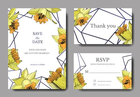 Vector Yellow Narcissus floral botanical flower. Engraved ink art. Wedding background card floral decorative border. Elegant card illustration graphic set banner. Stock Photo