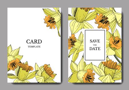 Vector Yellow Narcissus floral botanical flower. Engraved ink art. Wedding background card floral decorative border. Elegant card illustration graphic set banner. Illustration