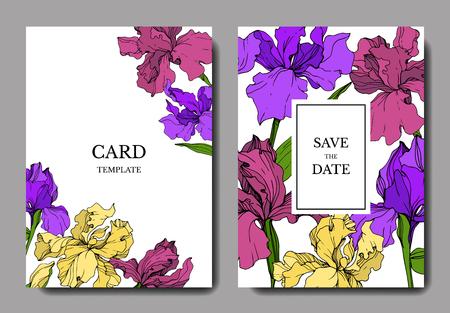 Vector Iris floral botanical flower. Wild spring leaf wildflower isolated. Engraved ink art. Wedding background card floral decorative border. Elegant card illustration graphic set banner. Stock fotó - 117953393