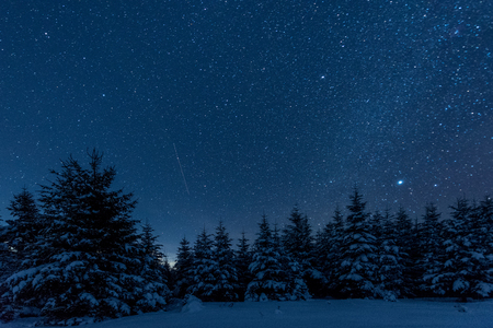 dark sky full of shiny stars in carpathian mountains in winter forest at night 版權商用圖片 - 117953425