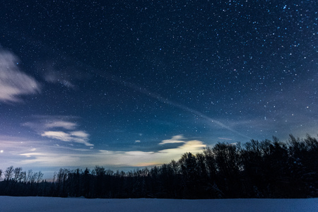 starry dark sky with sprucesin carpathian mountains at night in winter Imagens