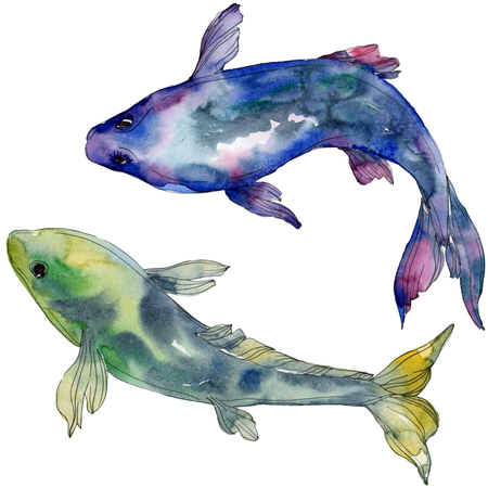 Spotted aquatic underwater colorful tropical fish set. Red sea and exotic fishes inside. Watercolor background set. Watercolour drawing fashion aquarelle. Isolated fish illustration element.