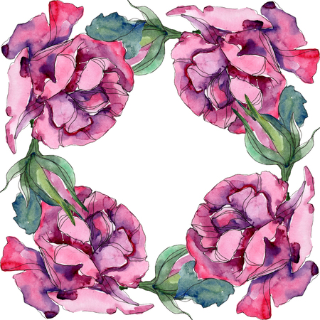 Purple rose floral botanical flower. Wild spring leaf wildflower isolated. Watercolor background illustration set. Watercolour drawing fashion aquarelle. Frame border ornament square. 写真素材