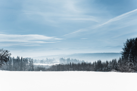landscape with snowy white carpathian mountains and trees in winter Imagens