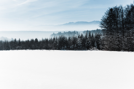 blue cloudy sky and winter snowy mountain forest in carpathians