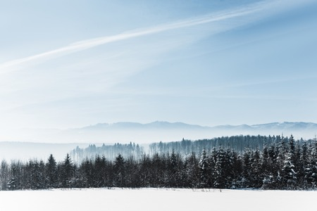 blue cloudy sky with sunshine and winter snowy mountain forest in carpathians Imagens