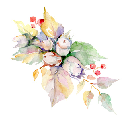 Bouquet with hazelnuts and leaves. Wild spring leaf isolated. Watercolor background illustration set. Watercolour drawing fashion aquarelle isolated. Isolated bouquet illustration element. Stock Photo