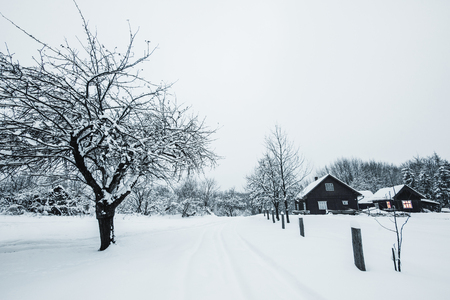 trees covered with white snow and wooden houses in Carpathian Mountains Imagens
