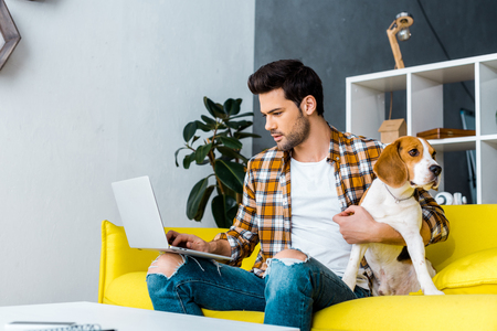 male freelancer working on laptop on yellow sofa with dog