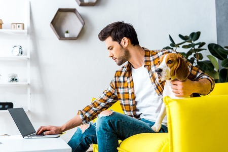 handsome man teleworking on laptop in living room with dog Foto de archivo