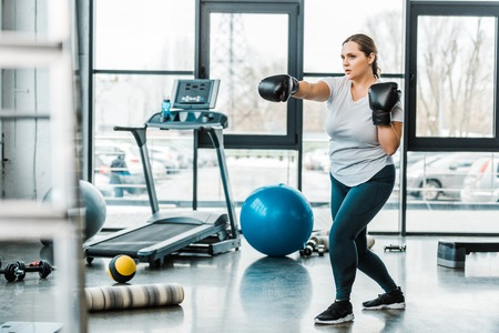 serious plus size girl wearing boxing gloves and practicing kickboxing near sport equipment