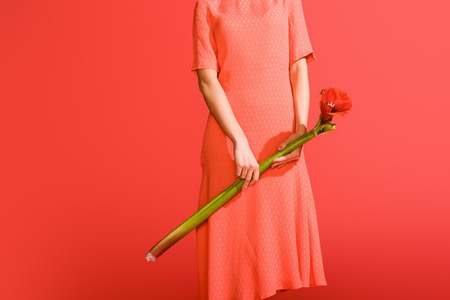 cropped view of elegant girl in dress holding flower isolated on living coral. Pantone color of the year 2019 concept