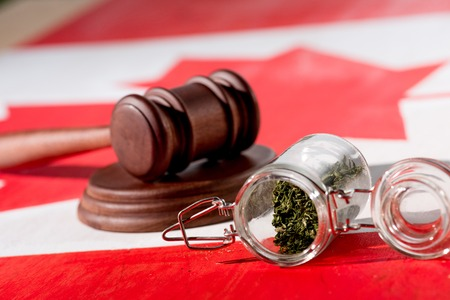 selective focus of cannabis in glass jar with wooden gavel on canadian flag, marijuana legalization concept