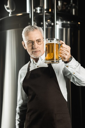 senior brewer looking at glass of beer in brewery Stok Fotoğraf
