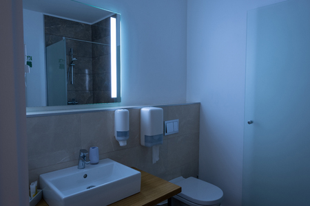 bathroom interior with sink, toilet, and mirror