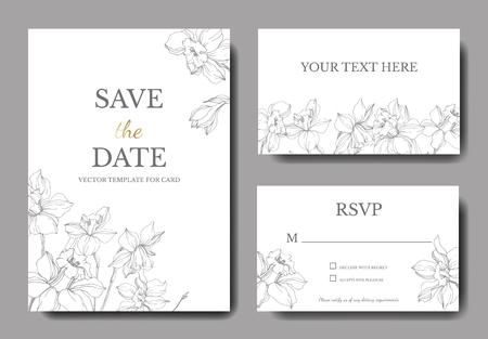 Vector Narcissus floral botanical flower. Wild spring leaf isolated. Black and white engraved ink art. Wedding background card floral decorative border. Elegant card illustration set banner. Vector Illustration