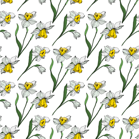 Vector White narcissus floral botanical flower. Wild spring leaf wildflower isolated. Engraved ink art on white background. Seamless background pattern. Fabric wallpaper print texture.