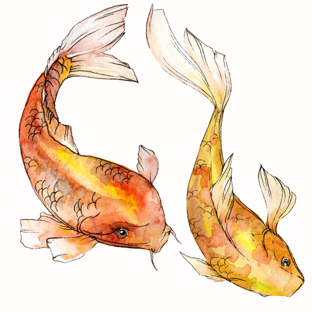 Watercolor aquatic underwater colorful tropical fish set. Red sea and exotic fishes inside: Goldfish. Aquarelle elements for background, texture. Isolated goldenfish illustration element. Standard-Bild - 118535804