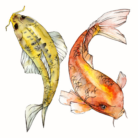 Watercolor aquatic underwater colorful tropical fish set. Red sea and exotic fishes inside: Goldfish. Aquarelle elements for background, texture. Isolated goldenfish illustration element. Stock Illustration - 118584546