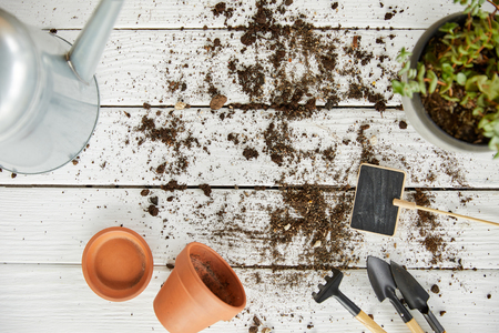 top view of plant, watering can, tools and flowerpots on white wooden table