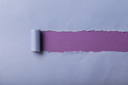torn blue paper with rolled edge on violet background Stockfoto