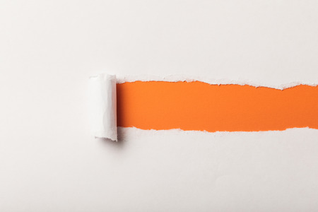 torn white paper with rolled edge on orange background