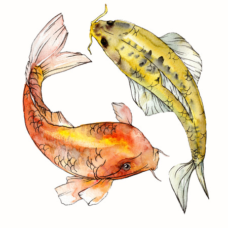 Watercolor aquatic underwater colorful tropical fish set. Red sea and exotic fishes inside: Goldfish. Aquarelle elements for background, texture. Isolated goldenfish illustration element. Фото со стока