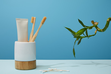 holder with toothbrushes, toothpaste in tube, ear sticks and green bamboo stem on table and blue background