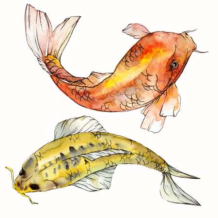 Watercolor aquatic underwater colorful tropical fish set. Red sea and exotic fishes inside: Goldfish. Aquarelle elements for background, texture. Isolated goldenfish illustration element. Reklamní fotografie