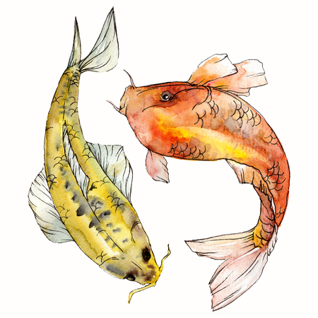 Watercolor aquatic underwater colorful tropical fish set. Red sea and exotic fishes inside: Goldfish. Aquarelle elements for background, texture. Isolated goldenfish illustration element. Stock Photo