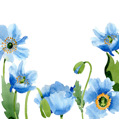 Blue poppy floral botanical flower. Wild spring leaf wildflower isolated. Watercolor background illustration set. Watercolour drawing fashion aquarelle isolated. Frame border ornament square.