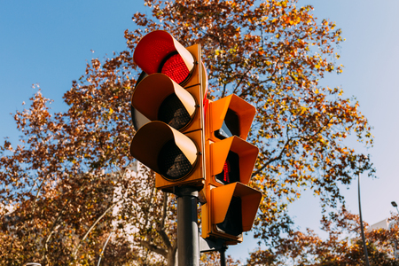 traffic light with red signal, green trees and clear blue sky on background, barcelona, spain Stockfoto