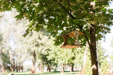 sunshine on tree with green leaves and wooden bird feeder 写真素材 - 119093906