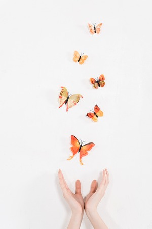 cropped view of female hands near orange butterflies flying on white background, environmental saving concept Foto de archivo